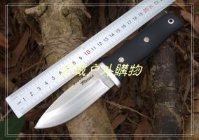 特价鹰版-鹰飞凌A2钢K鞘随行N1户外小直刀